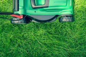 Mow lawns for extra money